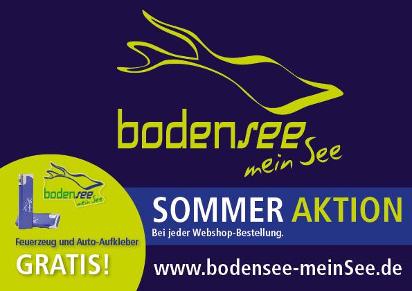 Flyer-Sommer-Aktion